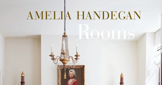 Color Outside The Lines Book Review Amelia Handegan Rooms