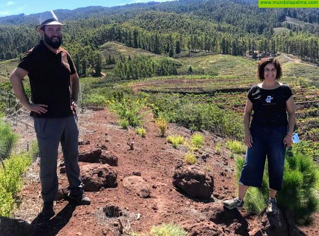 El Cabildo y el Ayuntamiento de Tijarafe exploran líneas de colaboración para conservar y difundir el patrimonio del municipio