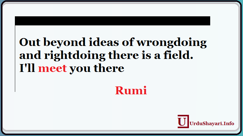 Out beyond Ideas on Wrongdoing and Right Doing , Most popular rumi quote, Deep Thoughts
