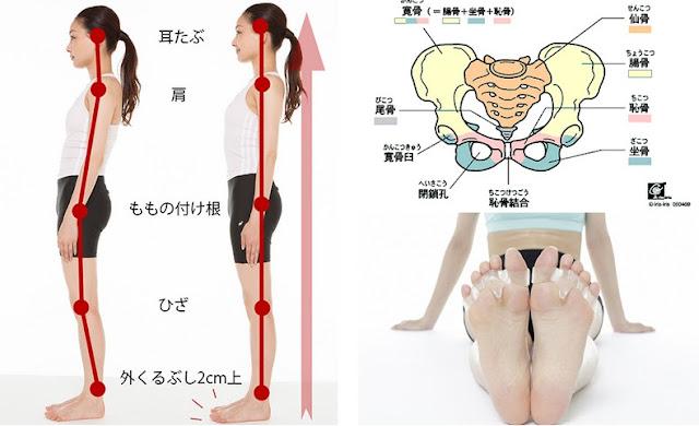 日本超人氣藥妝店小物:Ohyamashik 大山式魔法指環 瘦腿正骨盆