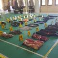 Dua Teroris MIT Poso Tewas Dalam Kontak Tembak Di Parimo