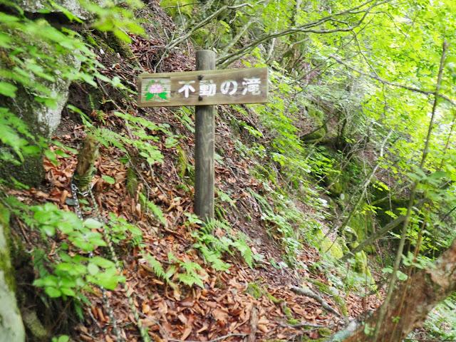 西沢渓谷 不動の滝看板