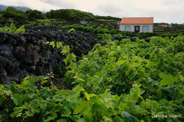 O que visitar na ilha Terceira - Roteiro Completo