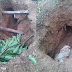 See Wickedness! These kidnappers dig up dead bodies to steal body parts in Kaduna... photos