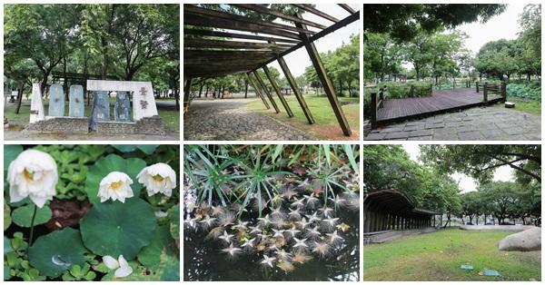 台中北屯|景賢公園|白荷花池|穗花棋盤腳|生態豐富綠意盎然