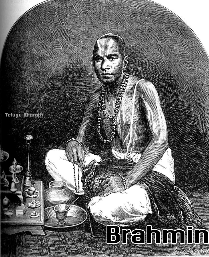 బ్రాహ్మణ నియోగులు - Brahmin Niyogis