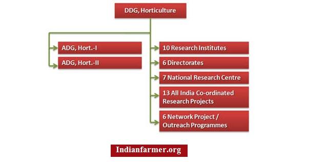 Horticulture Organizational Structure