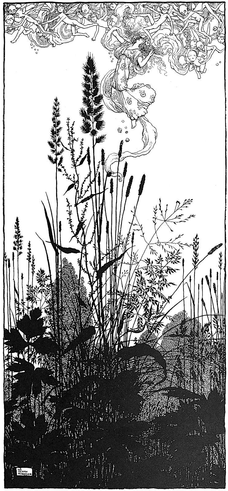 a W. Heath Robinson illustration