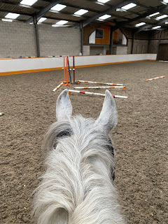Polework Exercises - Team Tunnah Equestrian Blog