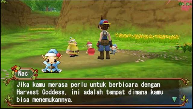 Harvest Moon : Hero Of Leaf Valley
