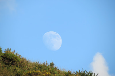 A shot of the rising moon against blue sky.