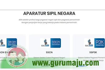 sscasn.bkn.go.id Link Untuk Pendaftaran PPPK (P3K)