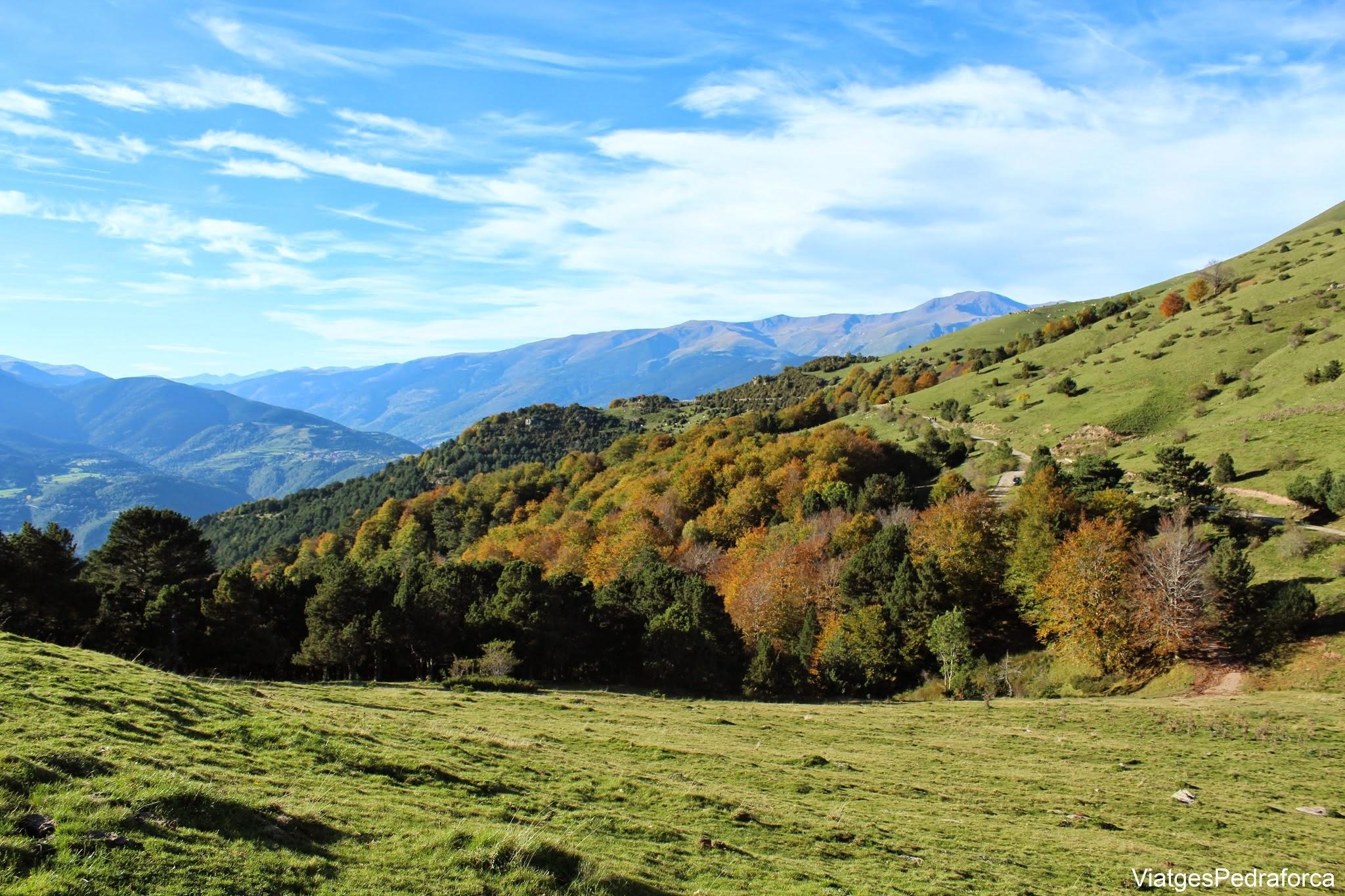 Coll de Jou Taga Bruguera Vall de Ribes Ripolles