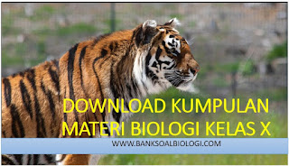 download, materi, biologi, kelas x