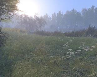 Arma3用Kihnu島マップ