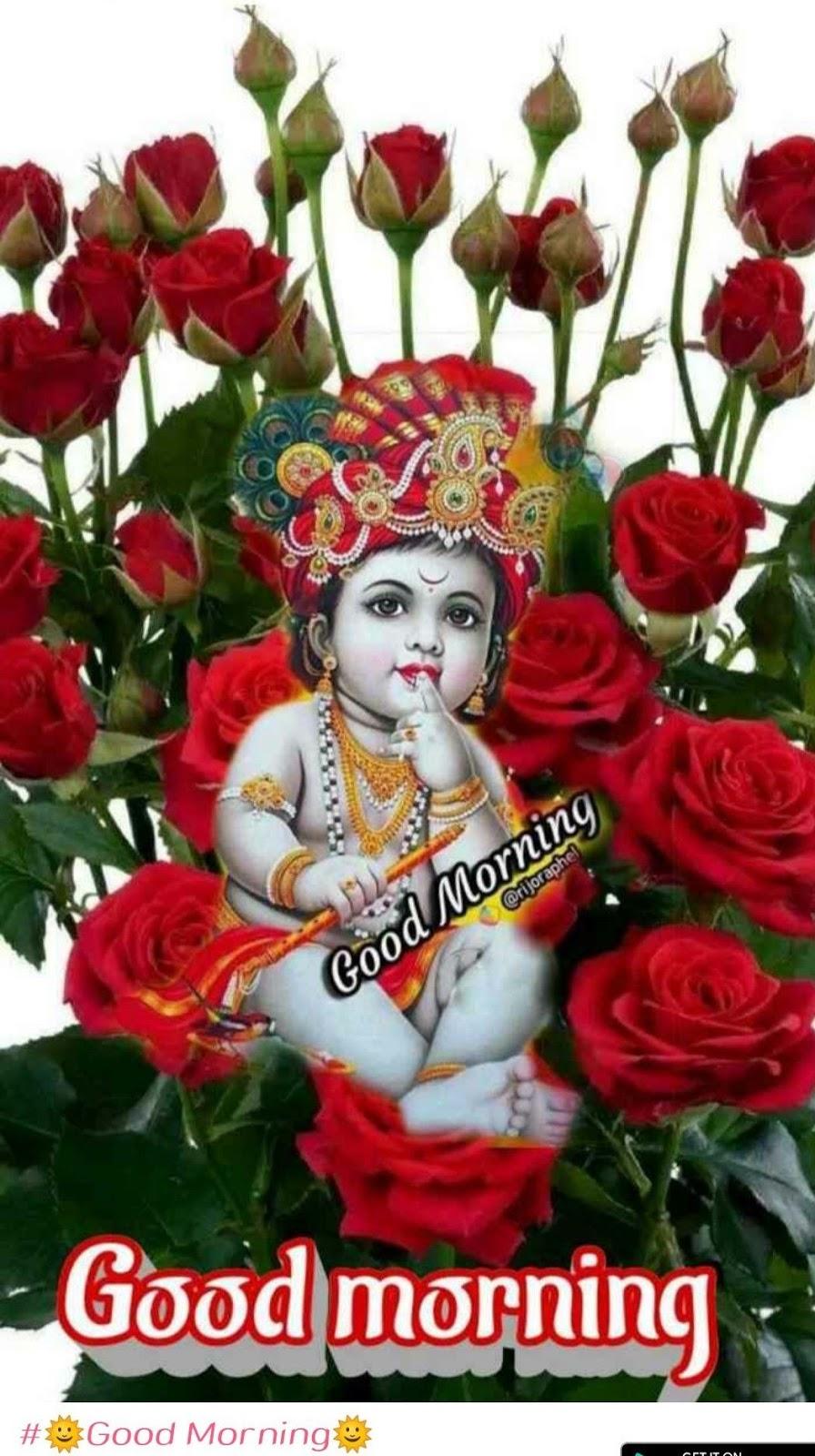 Good Morning Happy Krishna Janmashtami Wishes,