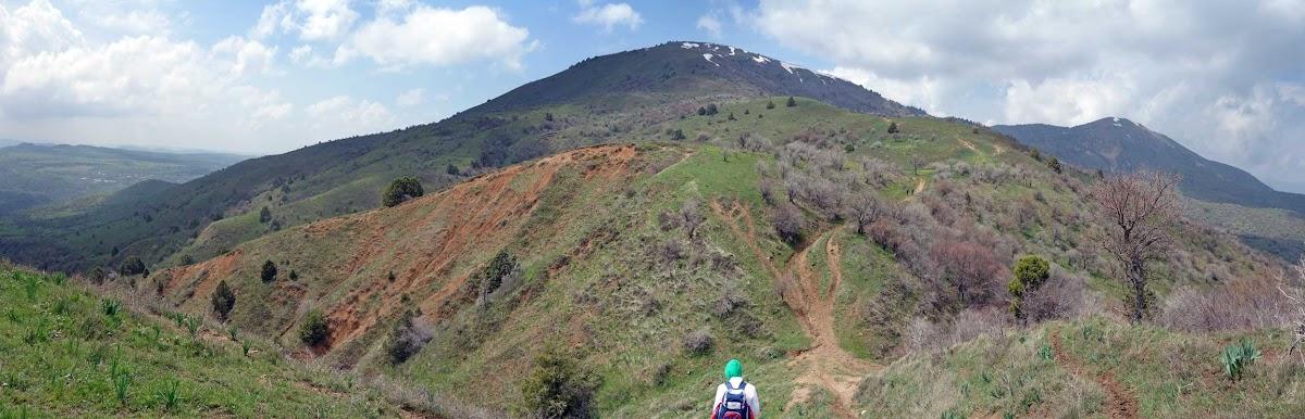 DSC03489 Panorama