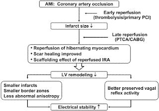 acute myocardial infarction pronosis