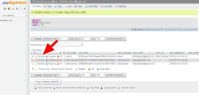 Wordpress Admin Panel Şifre Sıfırlama