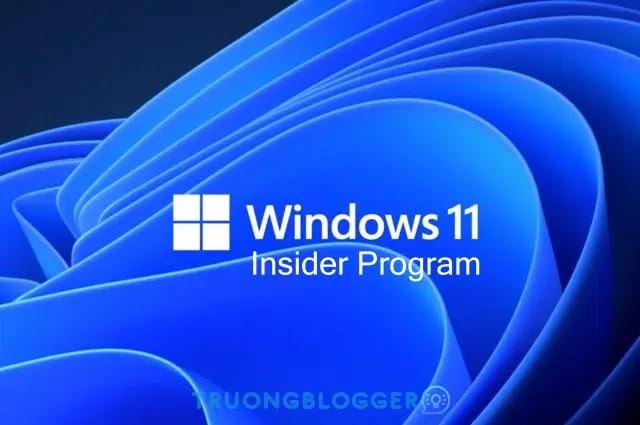 Microsoft phát hành Windows 11 Insider Preview Build 22000.120 mang lại một số tối ưu hóa