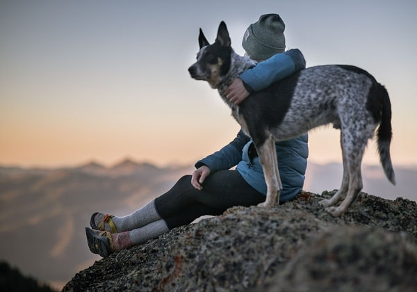 7 Tips On Camping With Your Pet Dog For The First Time