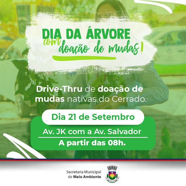 *LEM: Secretaria de Meio Ambiente promove Drive-Thru de doação de árvores nesta terça-feira (21), Dia da Árvore*