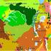 यह है दुनिया दूसरा का सबसे बड़ा जंगल - Information about Second largest forest of the world in Hindi