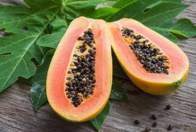 vitamin c buah pepaya meningkatkan daya imun tubuh