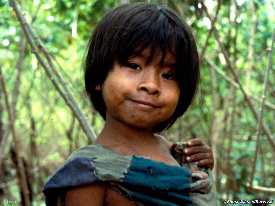 Rayela's Fiber Focus: Uncontacted Tribes
