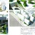 Aviatiei Park Development va ridica turnuri cu 18 etaje in capitala