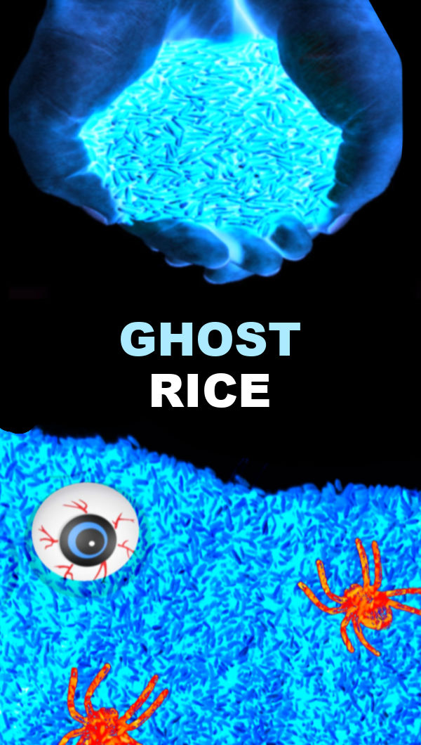 Make ghost rice for Halloween arts & crafts.  Kids of all ages are sure to love playing in this icy-cold sensory bin.  #ghost #ghostrice #ghostcraftsforkids #ghostactivitiesforpreschool #ghostactivities #sensoryactivitiestoddlers #sensorybins #sensoryrice #kidsricerecipes ##halloweenactivities #halloweensensorybin #growingajeweledrose #activitiesforkids