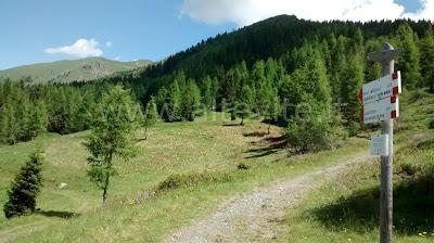 Lagorai in MTB - Val dei Mocheni: Panarotta - Parol