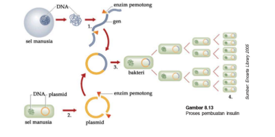 1. Teknologi Plasmid-baruoi