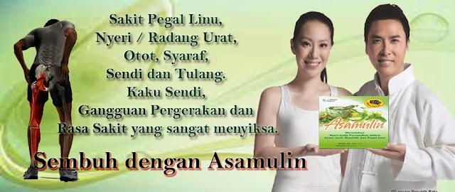 asamulin, efek samping asamulin, asamulin berbahaya, asamulin bpom, efek samping obat asamulin, toko obat herbal asamulin, jual asamulin, bahaya asamulin, kandungan asamulin, alamat agen asamulin
