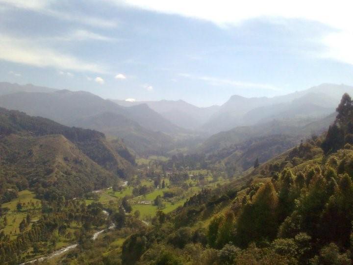 Vista del Valle de Cocora desde el mirador de Salento