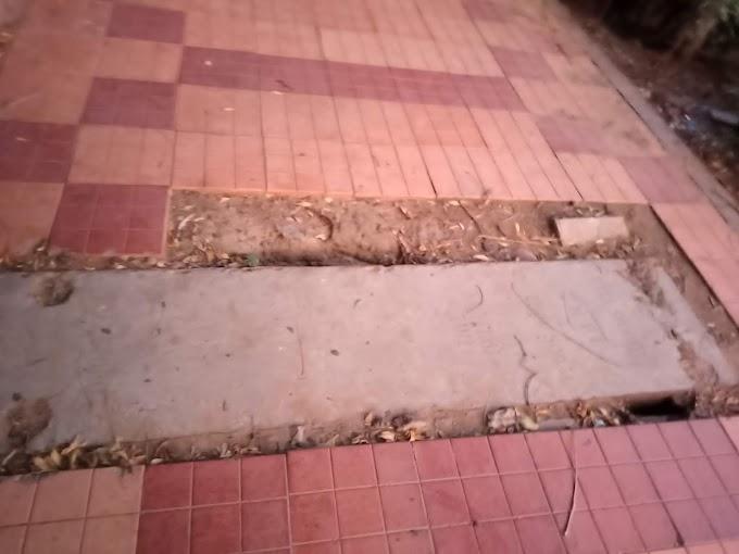 जयपुर नगर निगम की अनदेखी कहीं राहगीरों को महंगी न पड़ जाए