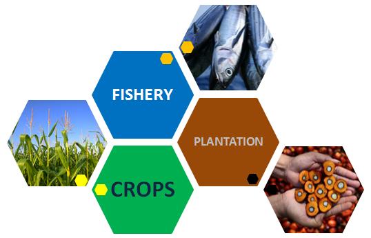 Daftar Saham Sektor Agriculture