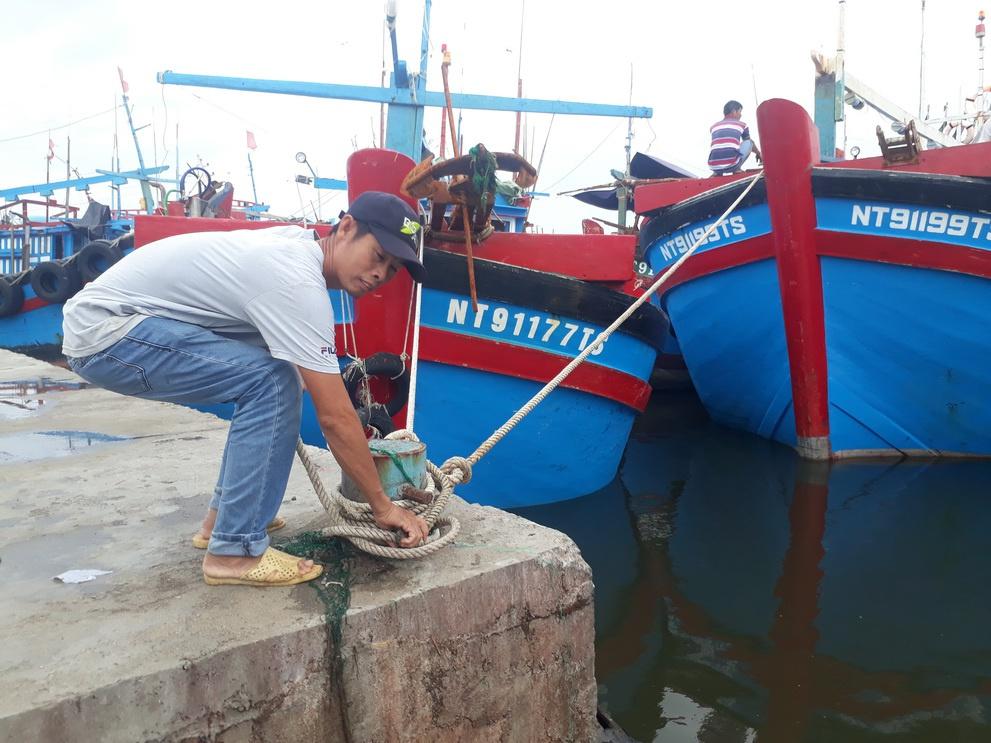 Ninh Thuận: Tạm dừng hoạt động Cảng cá Đông Hải để phòng chống dịch Covid-19