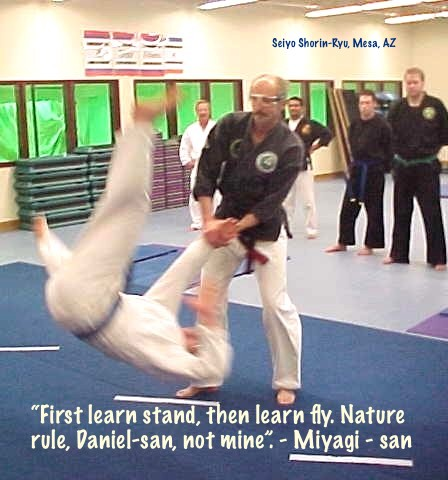 Traditional Jujutsu and Karate
