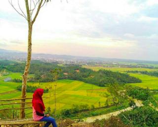 Bukit BLT Way Kepar Pringsewu Lampung
