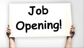 Strategic Economic Investment Trust Limited(SEIT)Recruitment