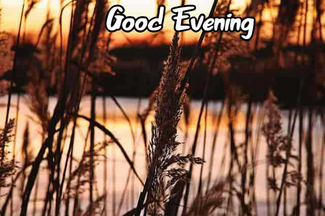 Good Evening Images Wallpaper Pics Download