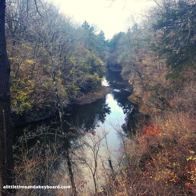 Peering into Rock Creek Gorge at Kankakee River State Park.