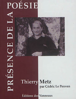 thierry-metz