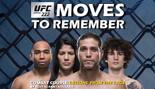 https://www.bloodyelbow.com/2018/3/10/16906498/ufc-222-moves-to-remember-technique-breakdown-tutorials-brian-ortega-frankie-edgar-cyborg