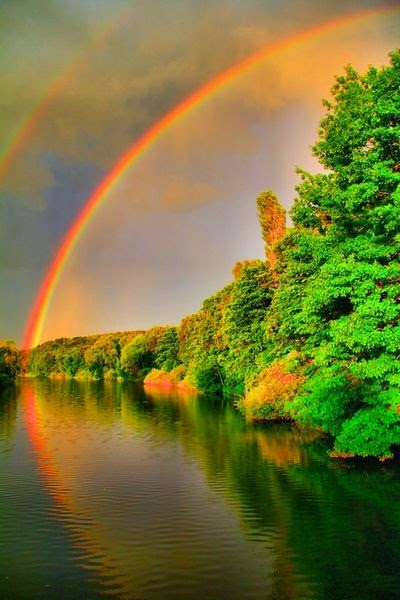 rainbows rainbow nature amazing sky reflection perfect stunning scenery trees magic nice colors tracy brinkley places hdr соколова александра discover