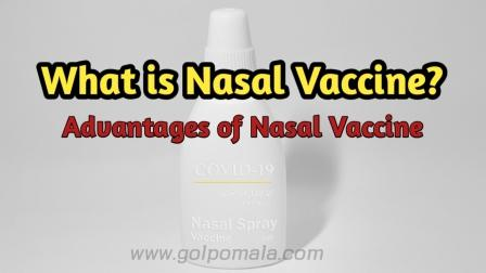 what_is_nasal_vaccine
