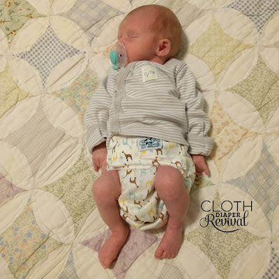 SoftBums Echo Preemie