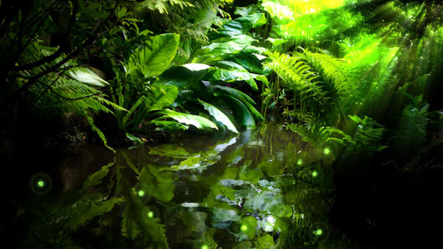 Jungle River Wallpaper Engine