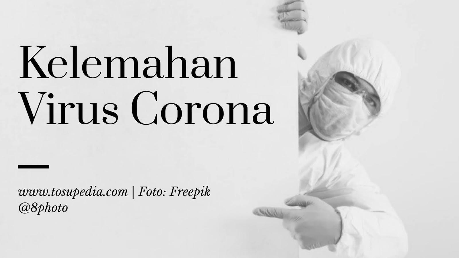 ilmuwan-rusia-mengklaim-telah-menemukan-kelemahan-virus-corona